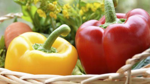 Vitamin E: Wo besonders viel davon drinsteckt