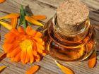 Urtinktur: Von der Pflanze zum homöopathischen Arzneimittel