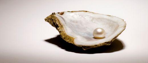 Geöffnete Auster mit Perle